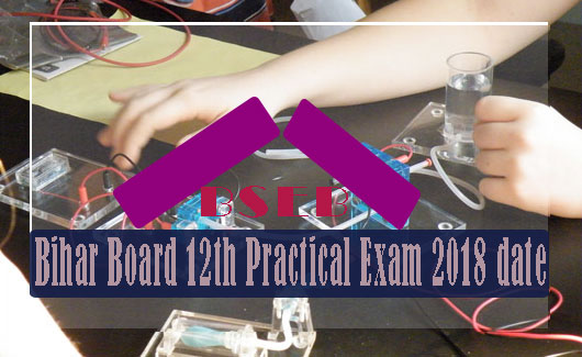 Bihar School Examination Board intermediate Practical Examination 2018, Practical Examination 2018 , BSEB 2018 Practical Examination Date Sheet , examination of BSEB 2018 Practical Examination, Bihar Inter Exam Practical Examination Date sheet 2018 , Bihar Board 12th Practical Exam Date 2018 Subject wise , BSEB Practical Exam Center, Bihar Board Class 12th Practical Admit Card 2018,