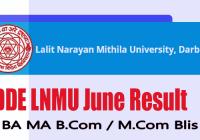 lnmu UG DDE exam result