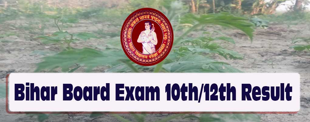 Inter Board Exam Result or BSEB Xth Exam Result 2018, Step to check Bihar board exam 2018 result, Bihar Board exam class 10th/12th result 2018, declaration of Board exam class 12th & 10th result online, Bihar board Xth XIIth result 2018, BSEB 2018 class 10th 12th board result, checking of Bihar Board Exam result , Bihar School Examination Board BSEB 10th 12th result 2018,
