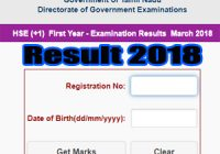 Tamil Nadu HSE 1st Year Result 2018 Online How To Check, Tamil Nadu HSC plusOne Result 2018, TN HSE Plus Result 2018,