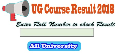 University Part 2 Exam Result 2018, Degree Course Part 2 Result 2018 Update, Degree Course Part 2 Result 2018, University Second Year Result 2018, check of UG Course Part 2 Result 2018, University Exam Part 2 Result 2018, http://www.lnmuuniversity.in/login