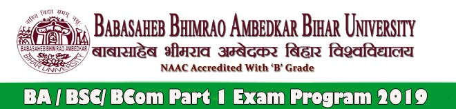 BRABU UG Part 1 BA BSC Exam Date Sheet 2019 | resultfor in