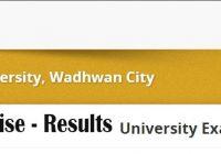 CU shah University Examination REsults semester wise