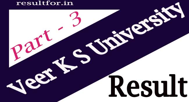 Veer Kunwar Singh University Part 3 Result