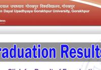 ddu ug gorakhpur univ exam results 2019