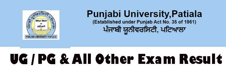 Punjabi University UG PG Result 2019