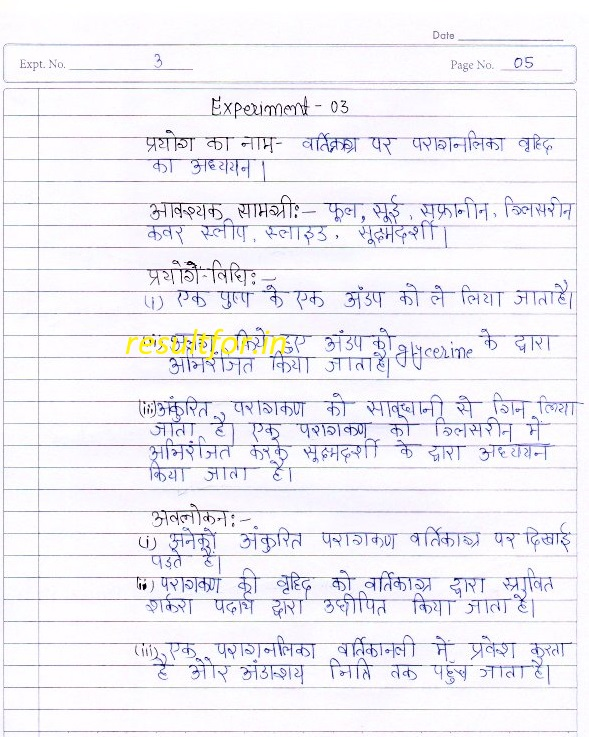 BSEB XIIth Bio Practical Exam Questions