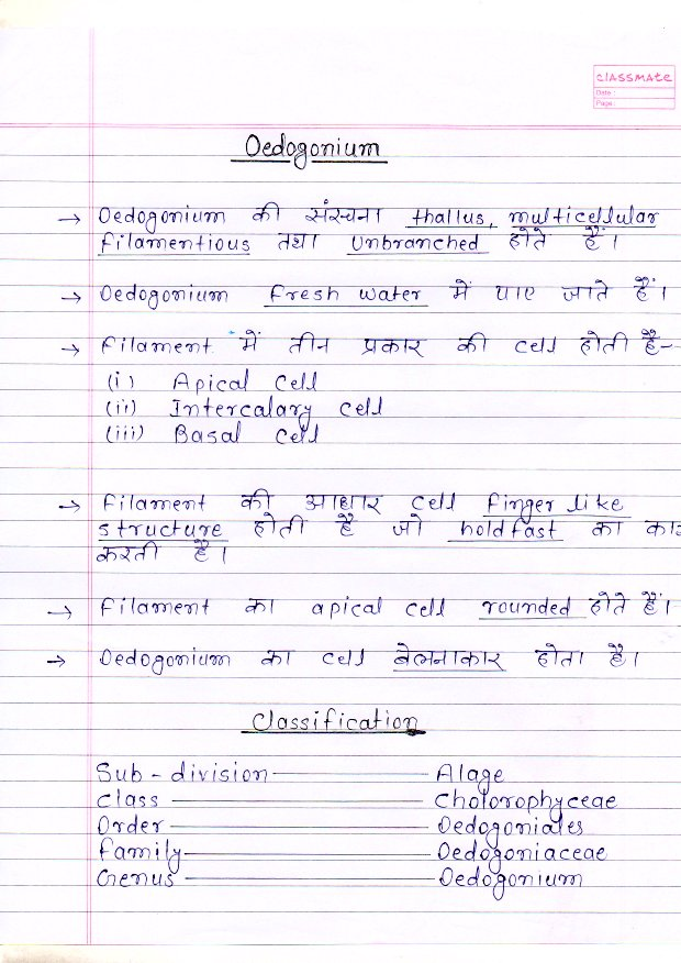 b.sc botany practical notes